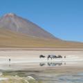 4 paulistanos i 2 catalans per l'altiplà de Bolívia